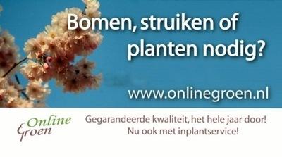 onlinegroen